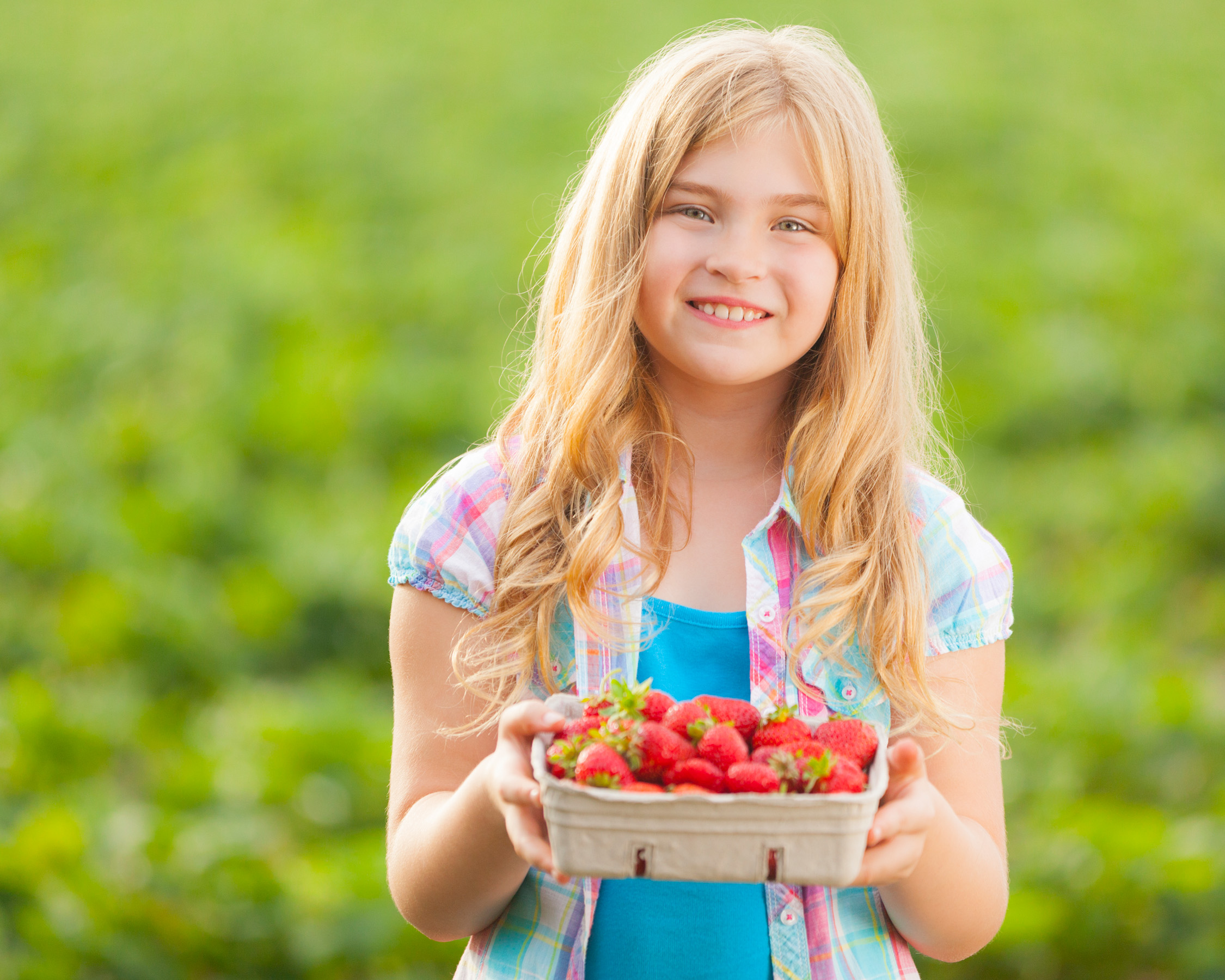 Girl holding fresh strawberries in a strawberry field
